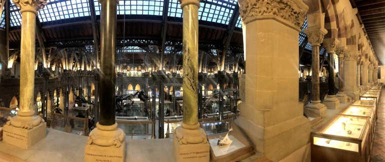 Muzeum přírodní historie v Oxfordu